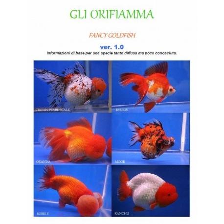 ORIFIAMMA INFO PDF